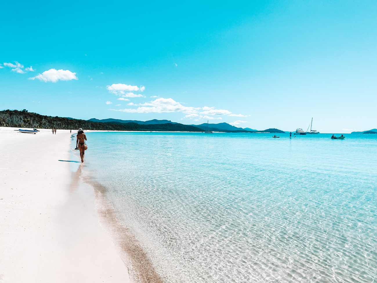 Spring into the Whitsundays with WAHI