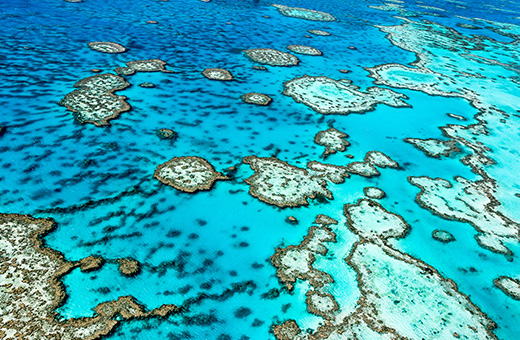 The Whitsundays' Natural Wonder